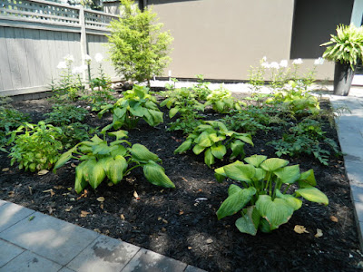 the danforth Toronto garden design after  by garden muses--not another Toronto gardening blog