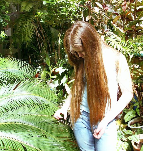 Самарский детский эколого-биологический центр: саговник пальмовидный Цикас