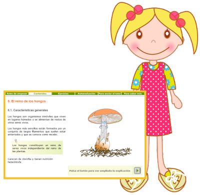 http://recursostic.educacion.es/secundaria/edad/1esobiologia/1quincena12/1quincena12_contenidos_6a.htm