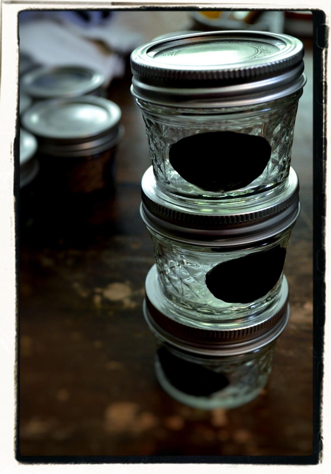 Girl Gone Granola Diy Magnetic Mason Jar Spice Rack