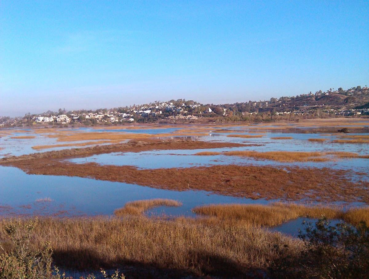 San Elijo Lagoon, California