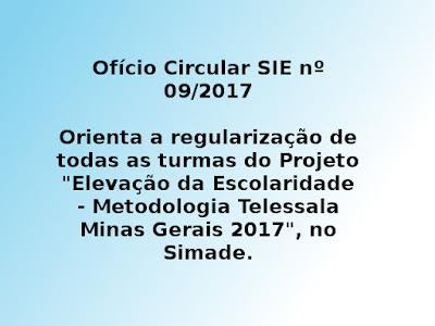 """Orienta a regularização de todas as turmas do Projeto """"Elevação da Escolaridade - Metodologia Telessala Minas Gerais 2017"""", no Simade."""