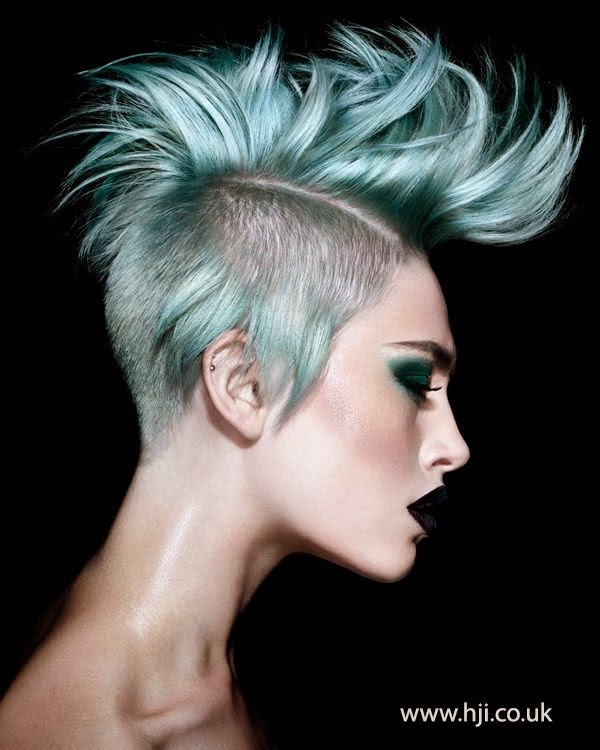 Girl Hairstyle Mohawk: The HairCut Web