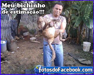 Fotos engraçadas do Facebook