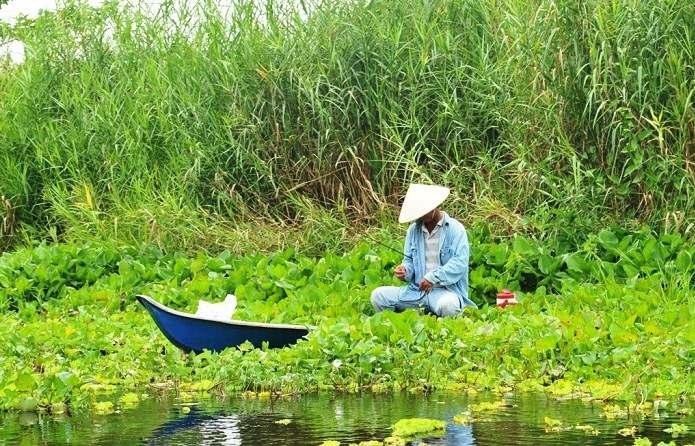 Kinh nghiệm câu cá ở bối bèo