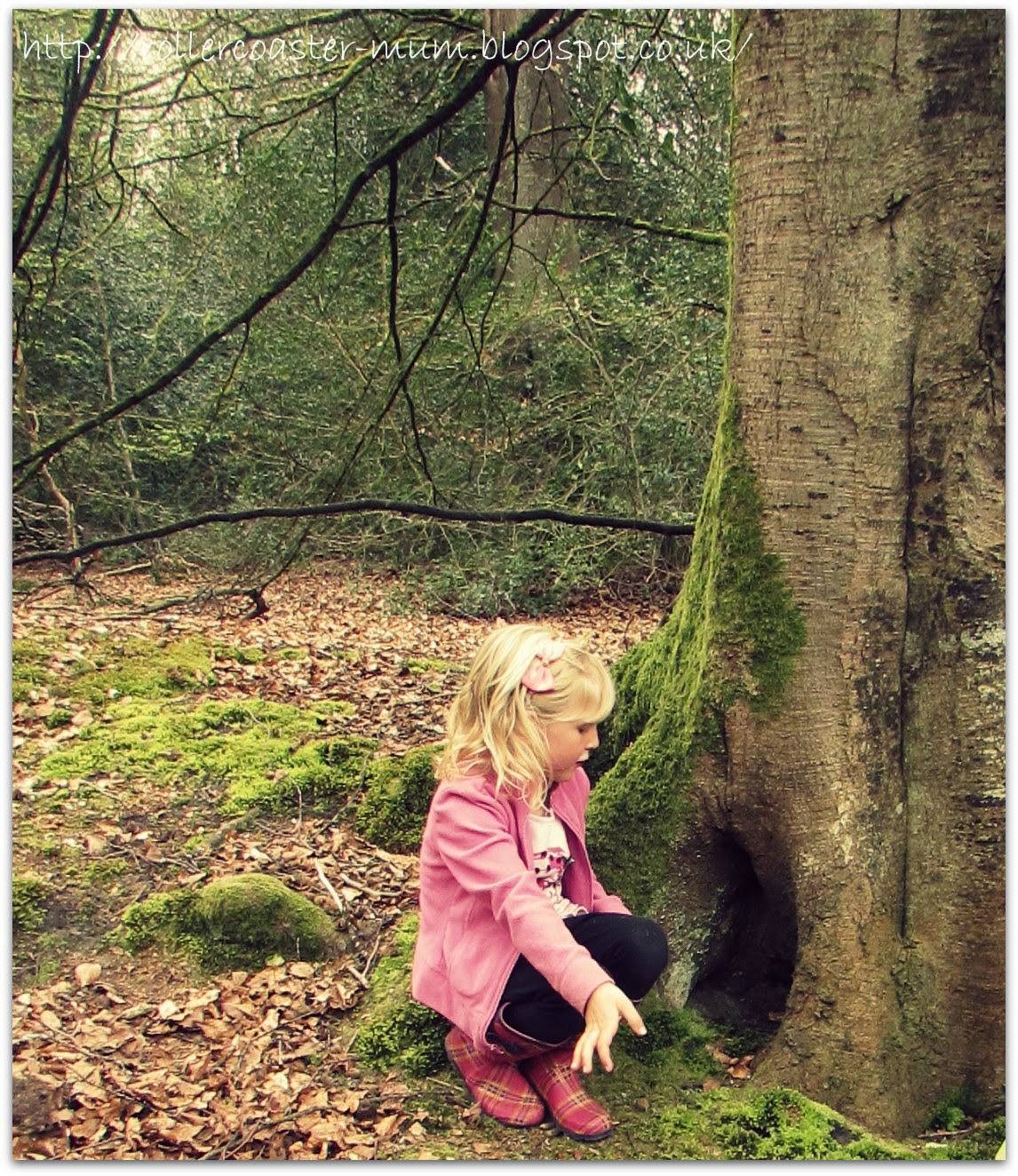 releasing faires through a fairy door at National Trust Waggoners Wells