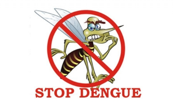 STRIKE: Defend against the Deadly Dengue