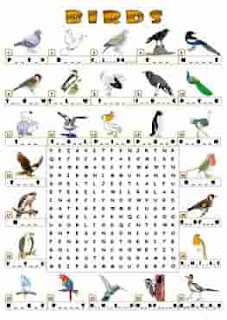 birds-wordsearch_key-ESL-EFL-downloadable-printable-worksheets-practice-exercises-and-activities-to-teach-about-birds-picture-dictionaries