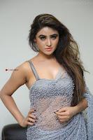Sony Charishta in Saree Deep neck Choli ~  Exclusive 14.JPG