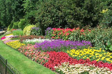 Gardens Designs Ideas On Flowers For Flower Lovers Flowers Gardens Designs Ideas