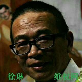 民主异议人士徐琳案被广州南沙法院以寻衅滋事罪判刑3年