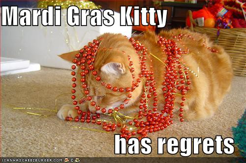 Click through for more! The three stages of Mardi Gras, as told by funny cat memes -- hilarious and cute lolcatz! via Devastate Boredom