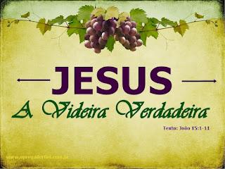 Série: Jesus no Evangelho de João - Jesus: A Videira Verdadeira