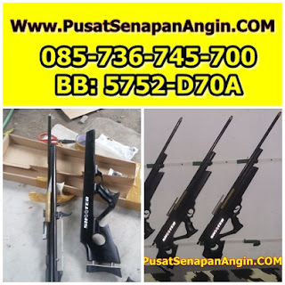 Jual Senapan Agin Sharp Model Pompa Samping
