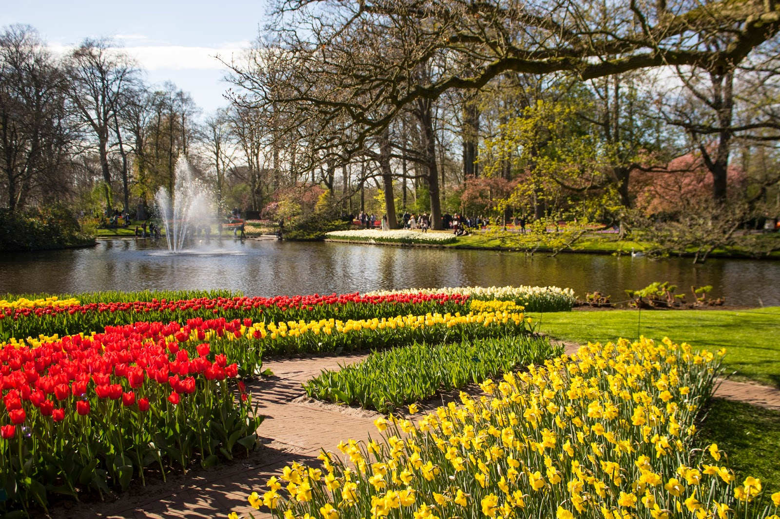 Keukenhof - The Tulip Gardens of Natherand