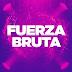 Fuerza Bruta es socio global de Harvard y recibe a sus estudiantes en Buenos Aires