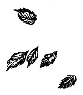 leaves image illustrations