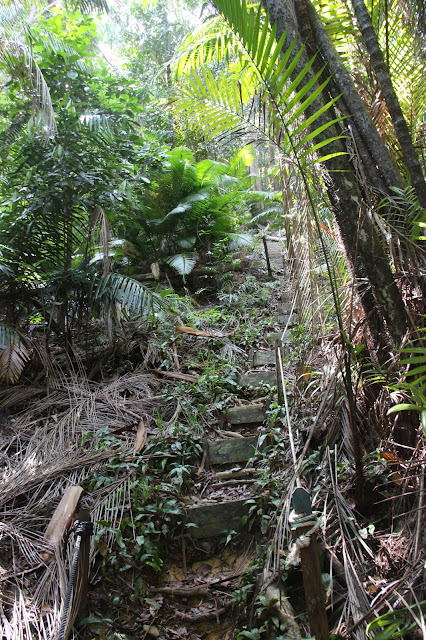 Jalur Trekking view poin di Tanjung Datu