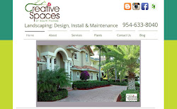 Creative Spaces Lanscaping