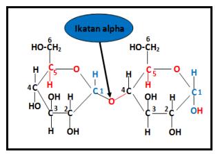 Rumus Struktur Selulosa α