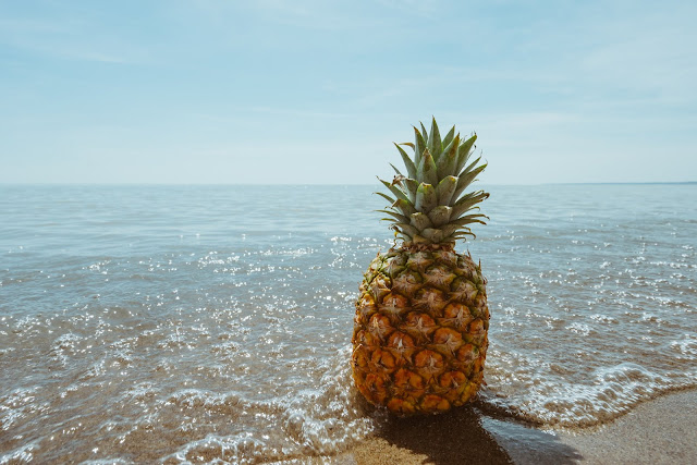 Beach Fruit Horizon Palm HD Wallpaper