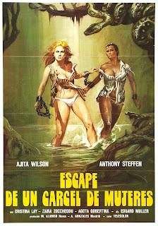 Femmine infernali (1980)