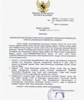 Diseluruh Indonesia, Tenaga Dokter, Dokter Gigi dan Bidan Segera Jadi CPNS