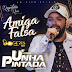 Unha Pintada - Amiga Falsa - CD Promocional 2019