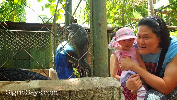 Eltoro Zoo de La Castellana