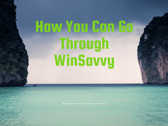 How You Can Go Through WinSavvy