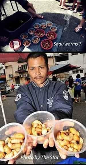 Johor Amazing Stories - Bazaar Johor