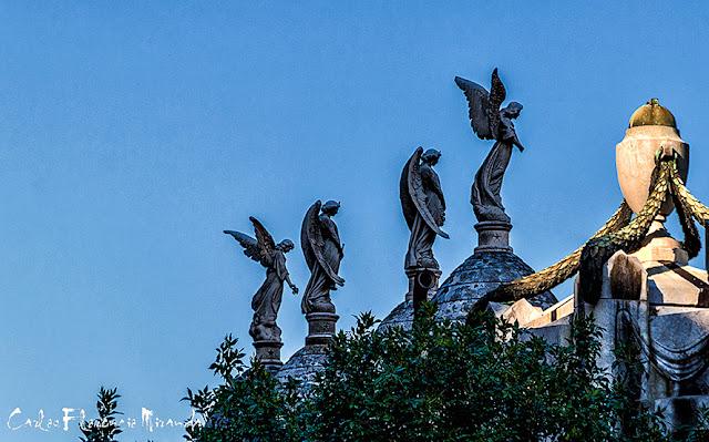 Esculturas de angeles en lo alto del cementerio de la Recoleta.