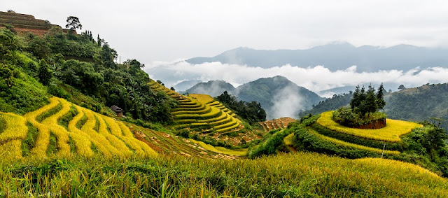 Ha Giang Stone Plateau - One of The Best Vietnam Trekking Tours 1