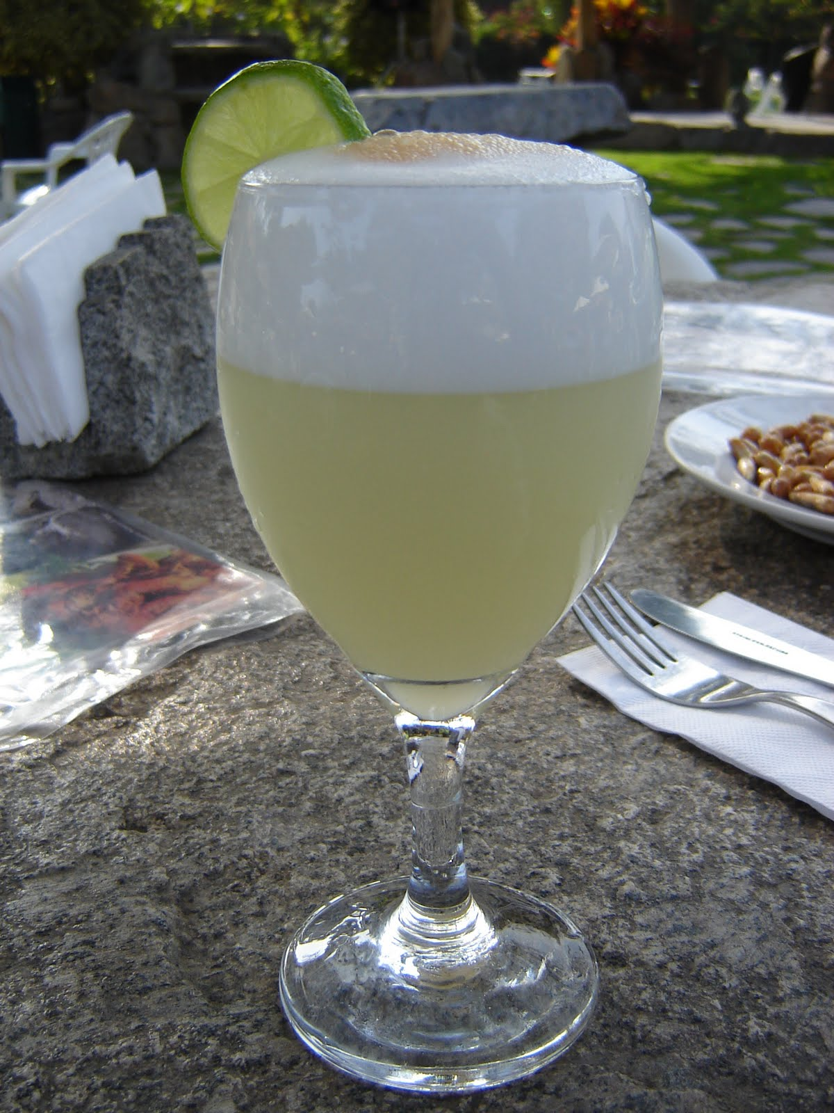 Me and My Llama: Pisco Sour