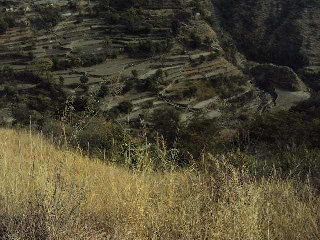 hills in tiger fall
