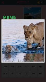 651 слов по воде идет мама львица вместе с детенышами 4 уровень