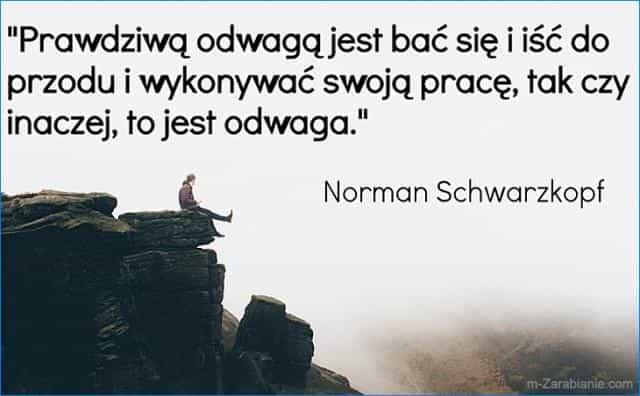 Norman Schwarzkopf, cytaty o pracy.