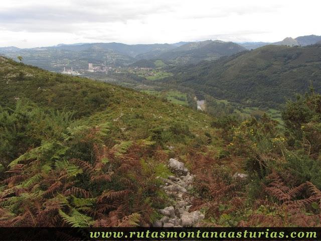 Ruta Bueño Peña Avis: Camino entre matorral y piedra