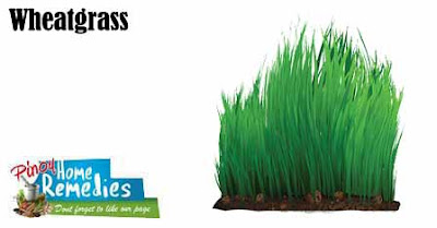 Top 10 Foods That Help You Smell Nice: Wheatgrass