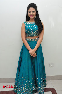 Sree Mukhi Pictures at Gentleman Audio Launch  0157
