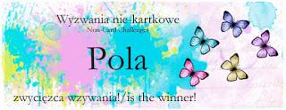 http://niekartkowo.blogspot.com/2016/05/wyniki-wzywania-9-results-of-challenge9.html