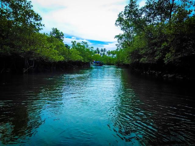 Desa Kapo Kapo dan Hutan Mangrove Objek Wisata Sumatera Barat