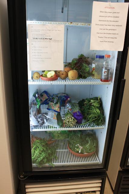 Lokale Supermärkte spenden Salat und Gemüse © Copyright Monika Fuchs, TravelWorldOnline