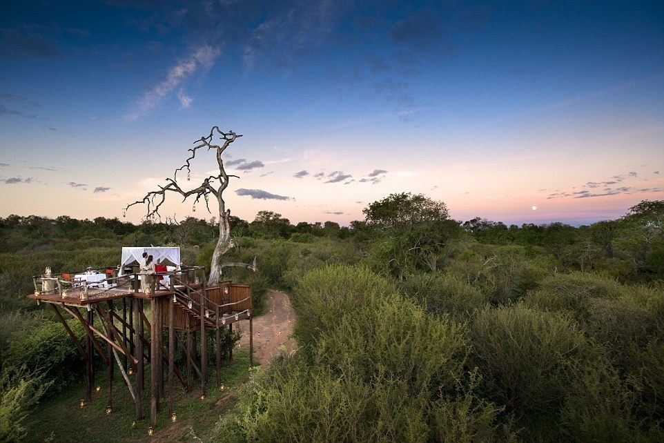 Lion Sands Game Reserve, South Africa - 15 Incredible Hotel Rooms Where You Can Sleep Under The Stars.