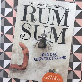 Kinderbuch für geübte Leseanfänger mit der Stubenfliege Rumsum