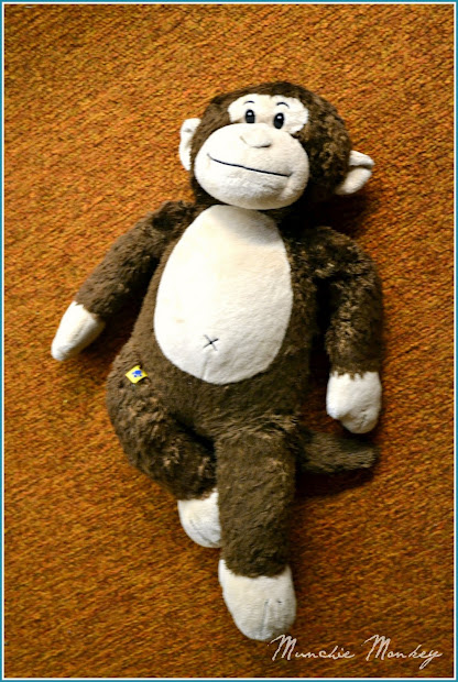 20 Munchie Monkey Pictures And Ideas On Stem Education Caucus