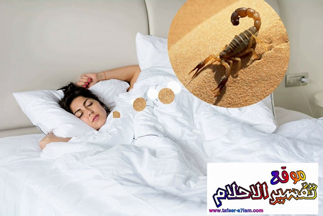 Interpretation of Dream Scorpions in a dream of Ibn Sirin
