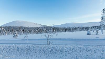 Pallas-Yllästunturin kansallispuisto Kellokas Äkäslompolo Ylläs