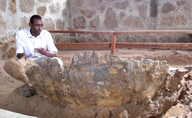 Koobi Fora in Kenya is a region of important Human Paleontology sites in northern Kenya.