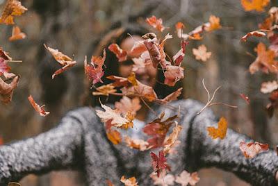 Fall Seasonal Guide for Meridian Township & Greater Lansing